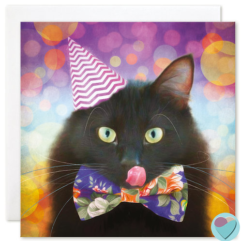 Black Cat BLANK Card