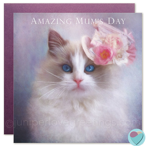 Ragdoll Cat Card MUM Birthday OR Mother's Day Card 'AMAZING MUM'S DAY'