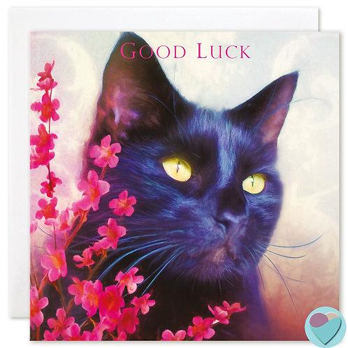 Black Cat Card 'GOOD LUCK'