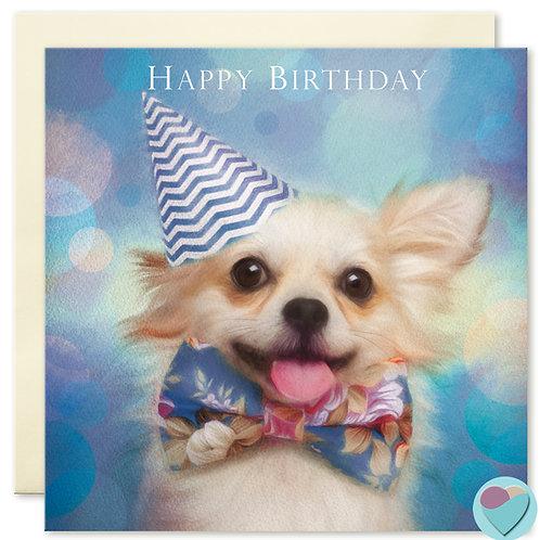 Chihuahua Birthday Card 'HAPPY BIRTHDAY'