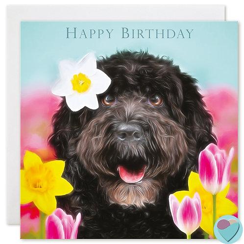 Cockapoo Birthday Card 'HAPPY BIRTHDAY'