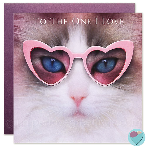 Ragdoll Cat BIRTHDAY Card Valentine Anniversary 'TO THE ONE I LOVE'