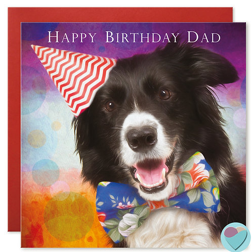 Border Collie DAD Birthday Card 'HAPPY BIRTHDAY DAD'