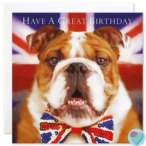 British Bulldog Birthday Card  'HAVE A GREAT BIRTHDAY'
