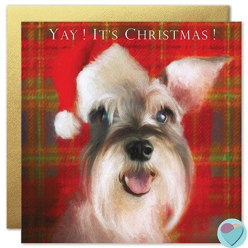 Schnauzer Christmas Card 'YAY IT'S CHRISTMAS'
