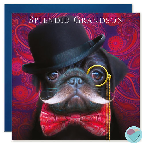 Black Pug Birthday Card 'SPLENDID GRANDSON'