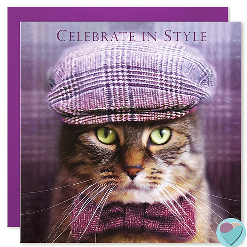 Tabby Cat Birthday Card 'CELEBRATE IN STYLE'