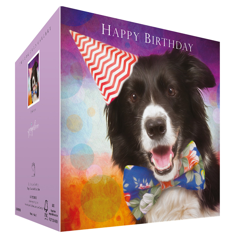 juniperlove, border collie card, birthday card fro dog lovers, happy birthday Border Collie, cards to or from the dog,