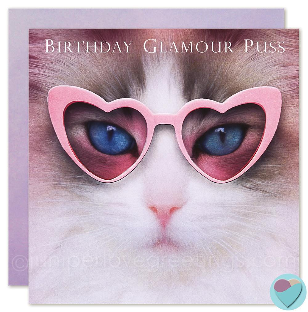 ragdoll cat birthday card, ragdoll cat card, birthday cards for cat lovers, blue bicolour ragdoll cat, cat wearing heart glasses card