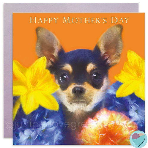 Chihuahua Mother's Day Card