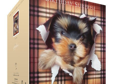 Cute Yorkshire Terrier Puppies!!