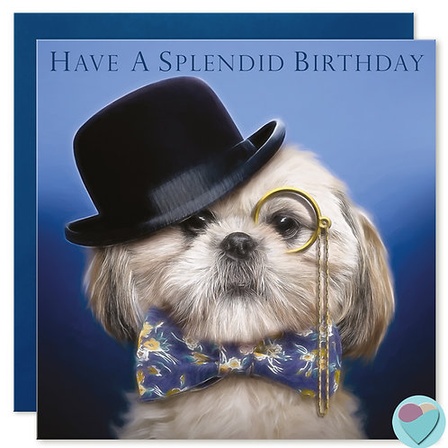 Shih-Tzu Birthday Card 'HAVE A SPLENDID BIRTHDAY'