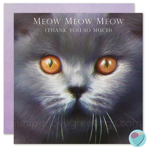 Thank You Card British Shorthair cat Lover 'MEOW MEOW MEOW'