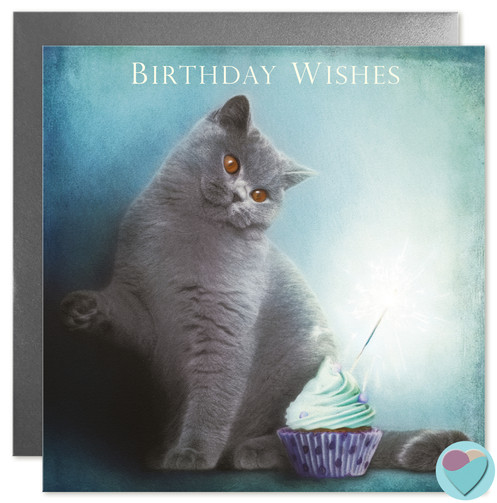 British Shorthair Cat Birthday Card BIRTHDAY WISHES