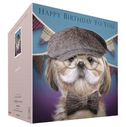 Shih-Tzu dog card