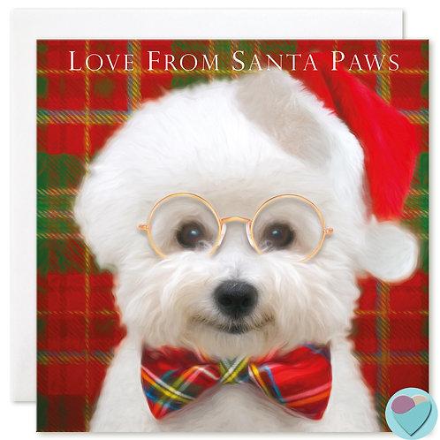 Bichon Frise Christmas Card 'LOVE FROM SANTA PAWS'