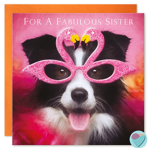 Border Collie Sister Birthday Card 'FOR A FABULOUS SISTER'