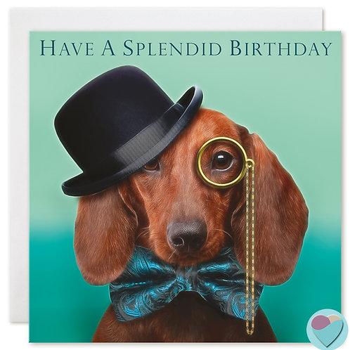 Dachshund Birthday Card 'HAVE A SPLENDID BIRTHDAY'