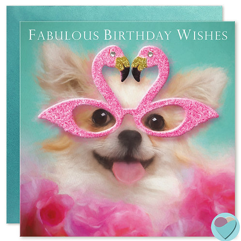 Chihuahua Birthday Card 'FABULOUS BIRTHDAY WISHES'