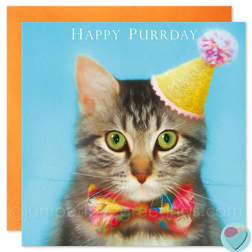 Brown Tabby Kitten Birthday Card UK 'HAPPY PURRDAY'