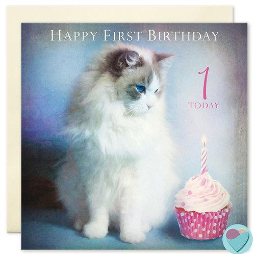 1st Birthday Card Ragdoll Cat 'HAPPY FIRST BIRTHDAY'
