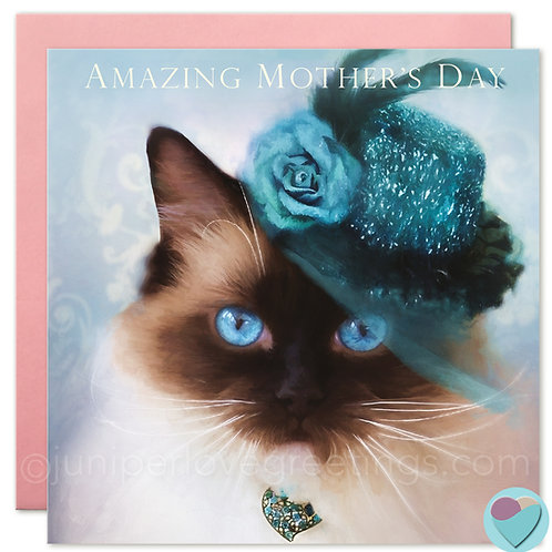 Ragdoll Cat Mother's Day or Mum's Birthday Card 'AMAZING MOTHER'S DAY'