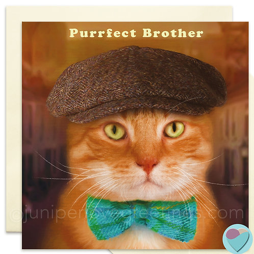 Brother Ginger Cat Birthday Card 'PURRFECT BROTHER'