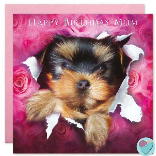 Yorkshire Terrier Mum Birthday Card 'HAPPY BIRTHDAY MUM'