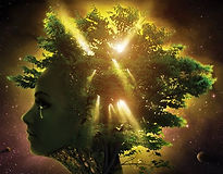 Gaia (2).jpg