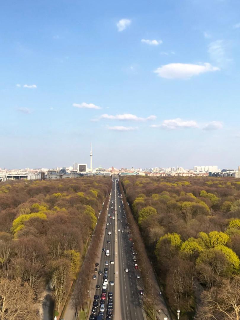 Green nuances, Tiergarten
