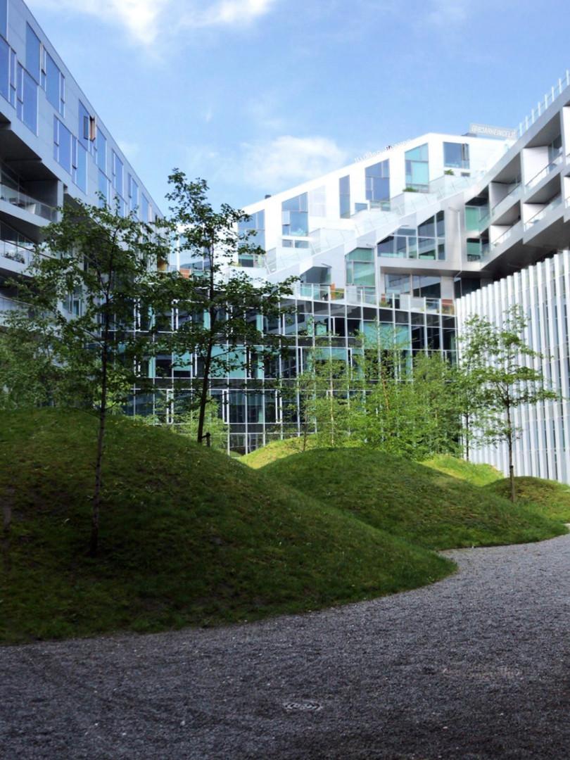 Hilled garden...