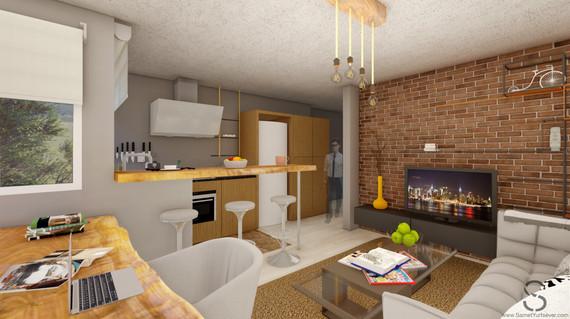 Apartment Conept