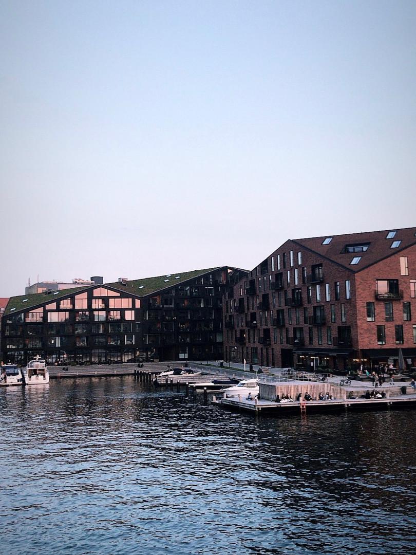 Roof design by in Copenhagen