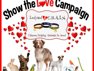 Show the Love Campaign