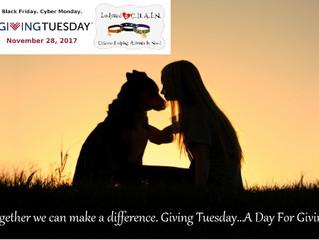 #GivingTuesday- November 28th