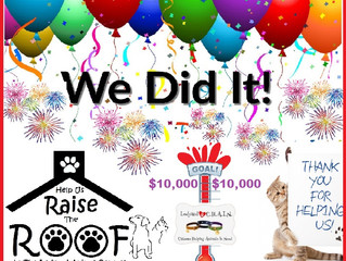 WE DID IT!!!!