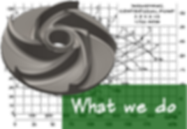 What we do green (PNG).png