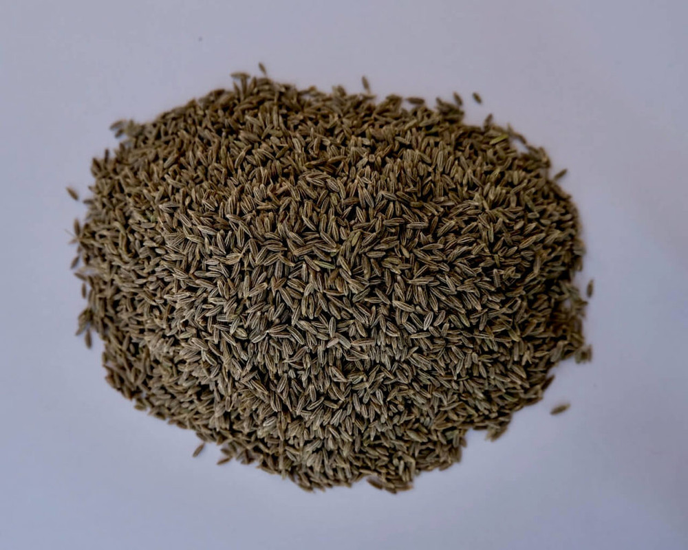 cumin-premium quality,natural taste,free from impurities,ready to use