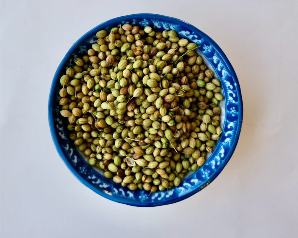 coriander seed -premium quality,natural taste,free from impurities,ready to use