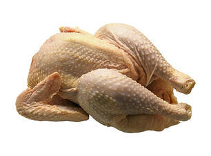 Chicken 7.jpg