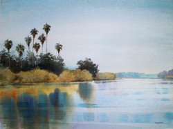 LakePalms