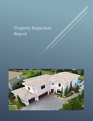 Pages from Sample Report - Roof Analytic