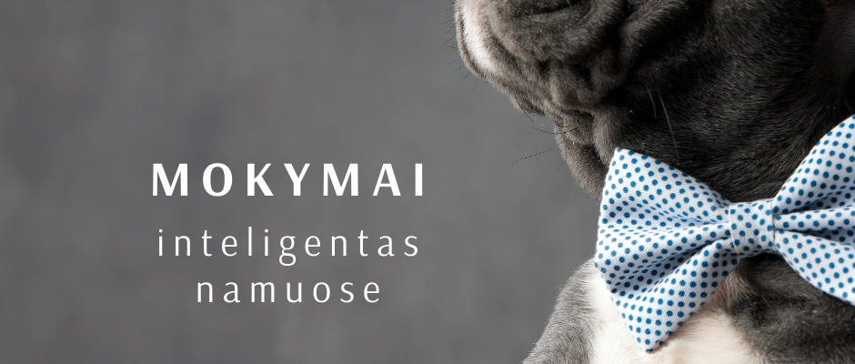 """""""Šuo - inteligentas namuose"""""""