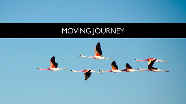 Moving Journey.png