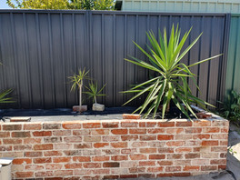 Mixed of Premium Heirtage - Solid & Recycled Wirecut bricks