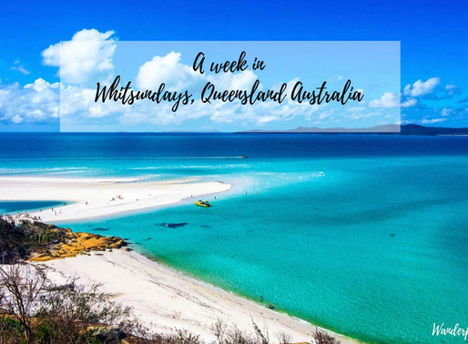 The Australian Paradise: Whitsundays ☀️🌴