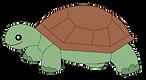 willard turtle.png