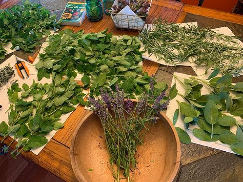 Whole, Dried Magical Herbs