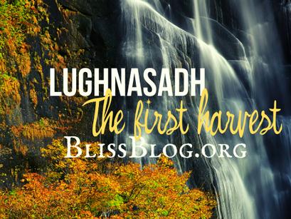 The First Harvest | Lughnasadh