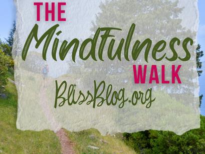 The Mindfullness Walk